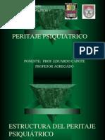 Estructura Del Peritaje Psiquic3a1trico