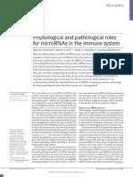 microRNA e  sistema imune (seminário)