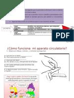 guia ciencias sistema circulatorio.doc