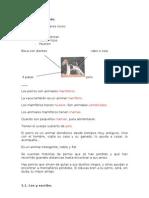 ACTIVIDADES+PARA+1º+CICLO+DE+PRIMARIA.+LOS+SERES+VIVOS