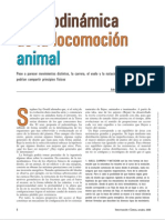 Locomocion Animal