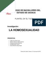 Homosexualidad Trabajo Final Final