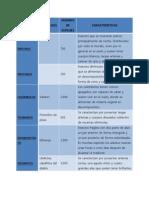 ORDEN DE INSECTOS.docx