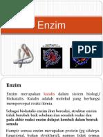 Enzim.pptx