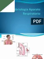 Embriología_Aparato_Respiratorio