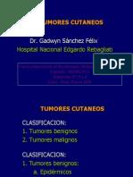 03 y 04 Tumores Cutaneos