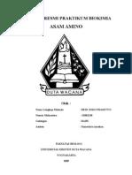 Asam Amino Lap