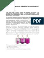 5-Guia de Laboratorio 6-Membrana y Enzimas (1)