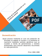 etologia-domesticacion