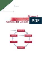Manual ciclo gestión de proyectos