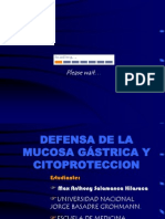 21604317 Defensa de La Mucosa Gastrica
