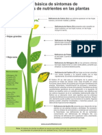 Tabla+Deficiencia+en+Plantas+PDF