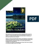 Delta Dunari