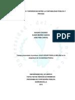 Semejanzas y Diferencias Entre La Contabilidad Publica y Privada