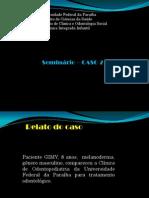 CASO SEMINÁRIO INTEGRADA INFANTIL - CASO 2