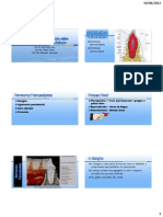PDF Biologia Estrutural Do Periodonto