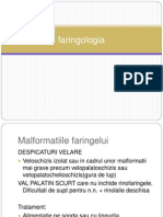 02 Faringologia Malformatii CS Traumatisme