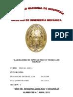 Informe de Pendulo Fisico 2013 Resuelto