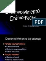 Desenvolvimento Facial Textos