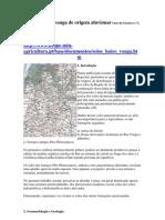 solos do baixo vouga de origem aluvionar Série de Estudos DRAPC1995n