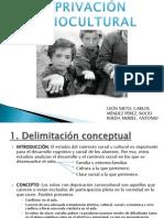 Deprivación SocioculturalPP