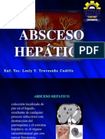 EXPO - Abseso Hepatico (2)