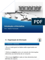 Capítulo-6-Organização-da-Informação