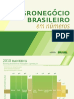Agronegcio Brasileiro