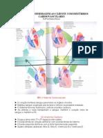 Aula - Sistema Cardiovascular