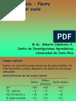 12-Suelos_salinos