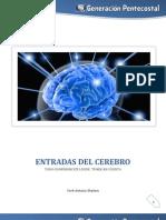 Cinco Entradas Del Cerebro