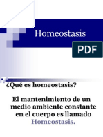 Homeostasis EXCELENT