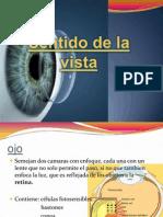 sentidodelavista-091219002303-phpapp02