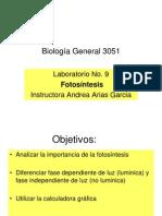 presntacion fotosintesis
