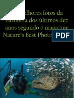 23015386 as Melhores Fotos Da Natureza