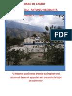 Diario Pedagogico 2013