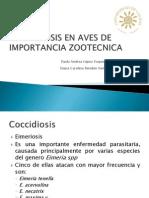 Coccidiosis en Aves de Importancia Zootecnica
