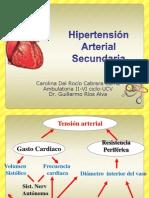 Hipertensión Arterial Secundaria
