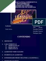 Micro Alim (Exposicion Salmonella)
