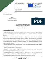 Raport Activitate Dec 2011elena