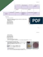 micro semana 2.pdf