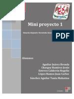 Mini Proyecto 1