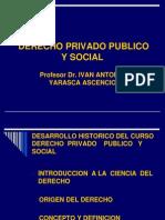 Derecho Priv Publico y Social 2011