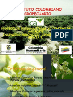 Proteccion Fitosanitaria Al Cultivo de Aguacate - Ica
