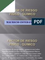 factorderiesgofisico-quimico-101205095043-phpapp02