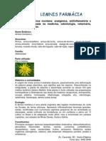 Informativo 09-03-09 Arnica