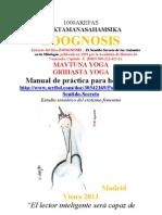 1000Arepas Maythuna Aceituna Una Yoga