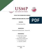 Anemia, Metabolismo Del Hierro