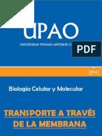SEMINARIO EXPOSICION - Transporte a Traves de La Membrana