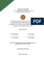 PROYECTO FINAL DE SEMINARIO(1).doc